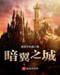 暗翼之城封面