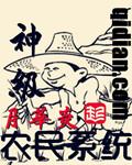 神级农民系统封面