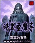 暗黑圣魔导封面