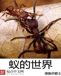 蚁的世界封面