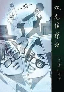 双龙侦探社封面