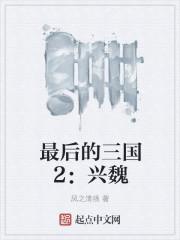 最後的三國2:興魏封面