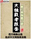 大独裁者报告封面