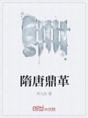 隋唐鼎革封面
