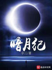 暗月紀封面