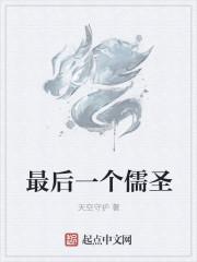 最後一個儒聖封面