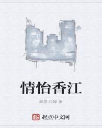 港娱的重生者封面