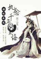 傾城妖妃:執念千年終不悔封面