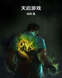 天啟遊戲封面