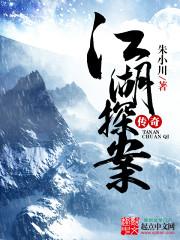 江湖探案传奇封面