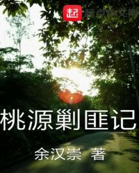 桃源剿匪記封面