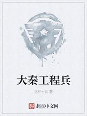 大秦工程兵封面