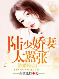 隱婚秘戀:陸少嬌妻太囂張封面