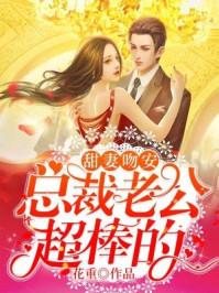 甜妻吻安:总裁老公超棒的封面