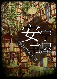 安宁书屋封面