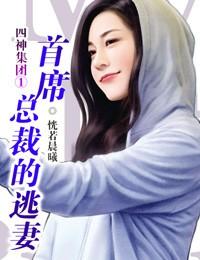 四神集團①:首席總裁的逃妻封面