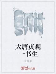 大唐貞觀一書生封面