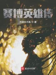 赛博英雄传封面