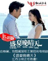 盛夏晚晴天(电视剧原著小说)封面