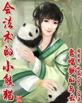 会法术的小熊猫封面