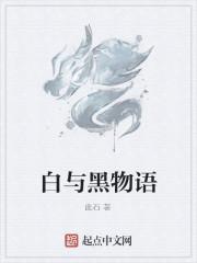 100世纪——白与黑物语封面