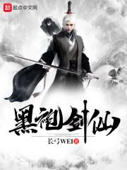 黑袍剑仙封面