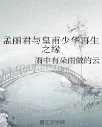 孟麗君與皇甫少華再生之緣封面