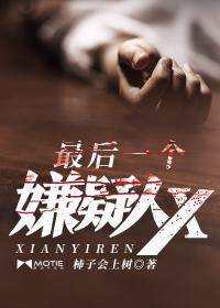 最后一个嫌疑人X封面