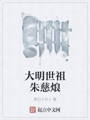 大明世祖朱慈烺封面