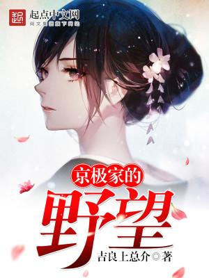 京极家的野望封面